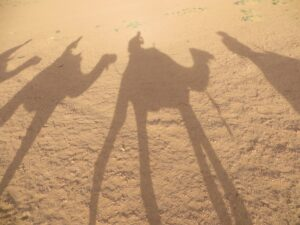 Our shadows look cool