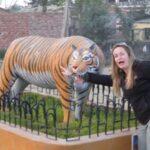 Two weeks in Nepal… Nagarkot, Bhaktapur, and Chitwan… Rhinos but no Tigers